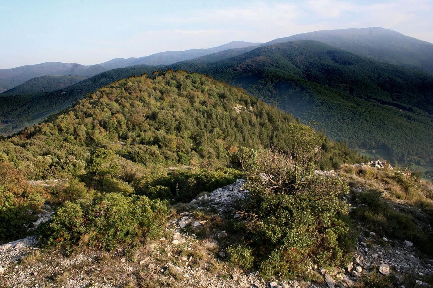 L'altura di Monte Cotrozzi