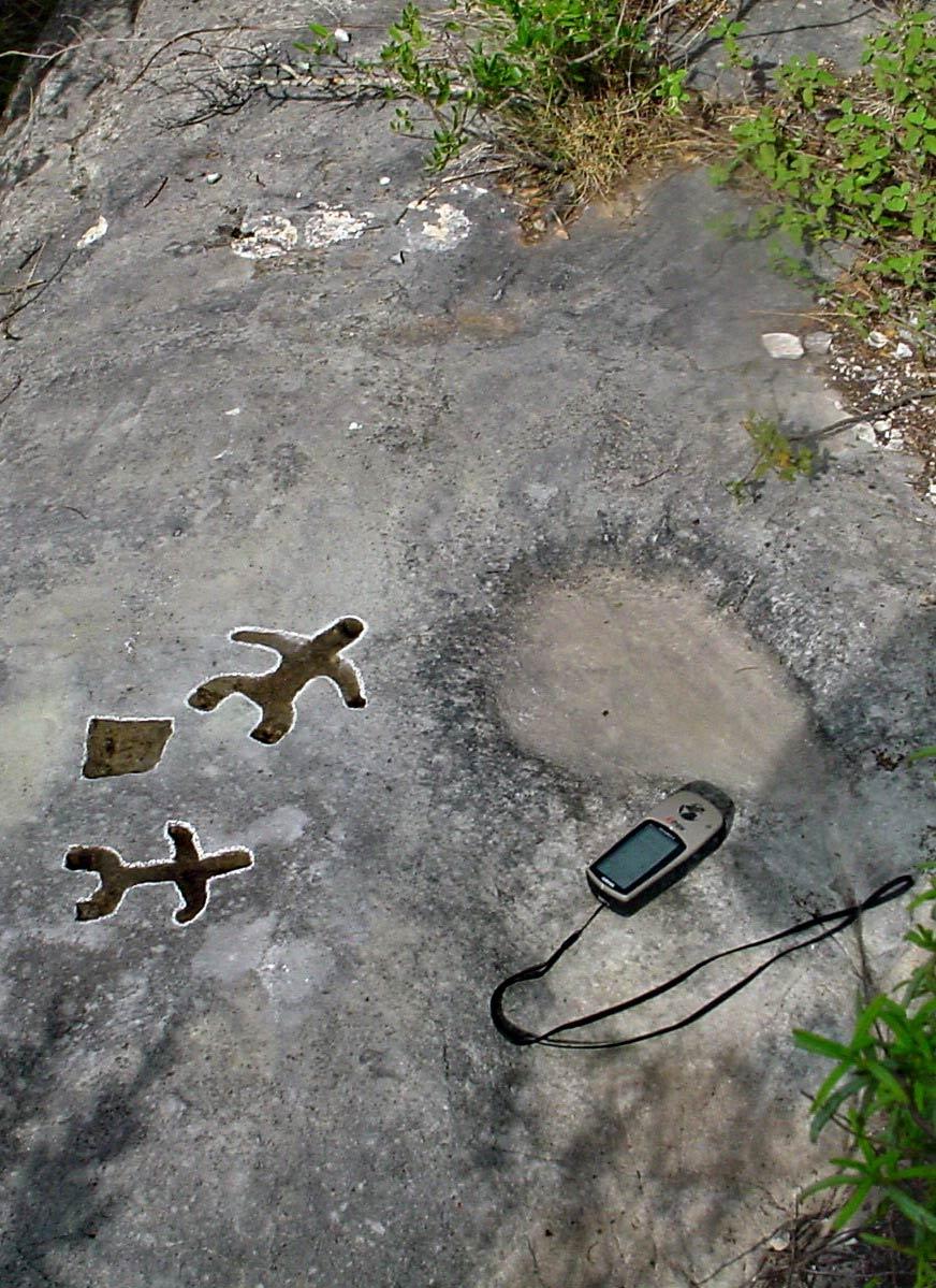 """La roccia dei """"tuffatori, probabilmente i petroglifi più antichi del sito"""