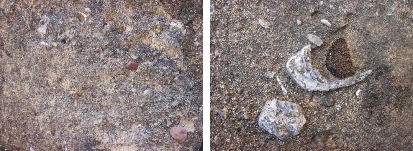 Fig. 1 – caratteristiche macroscopiche del materiale lapideo utilizzato per  le lastre di copertura della tomba