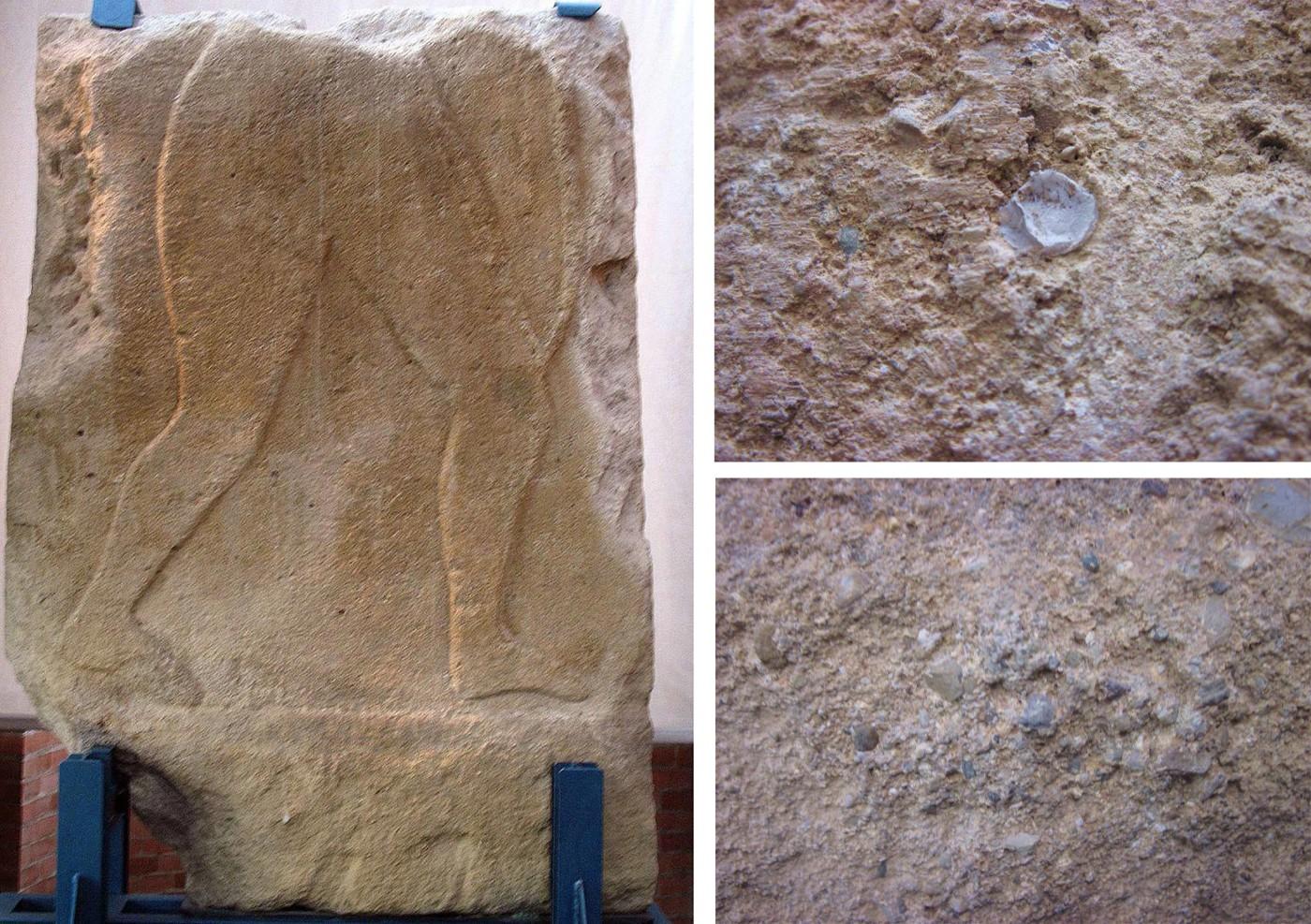 Fig. 3 – Stele rinvenuta durante gli scavi della Tomba dell'Arciere che si trova attualmente presso il Museo Archeologico di S.Casciano V. Pesa e particolari del materiale arenaceo-conglomeratico con cui è stata realizzata , si notino la presenza di resti di fossili e la disomogeneità delle dimensioni dei clasti