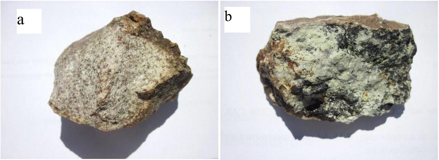 Fig. 9 - Campioni raccolti nel sito del Borro dell'Acqua Calda